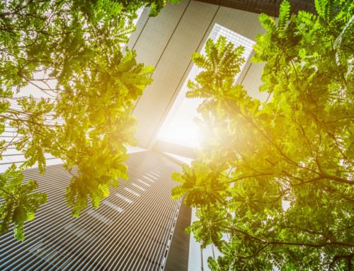 L'aluminium : un matériau sain pour l'environnement