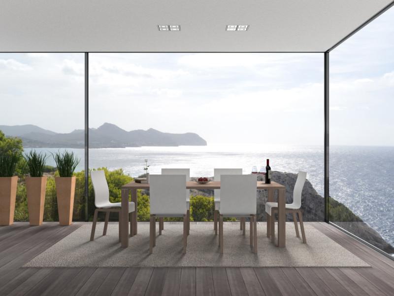 Baie Vitrée Menuiserie Aluminium minimaliste